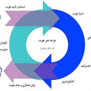 چرخه عمر هویت